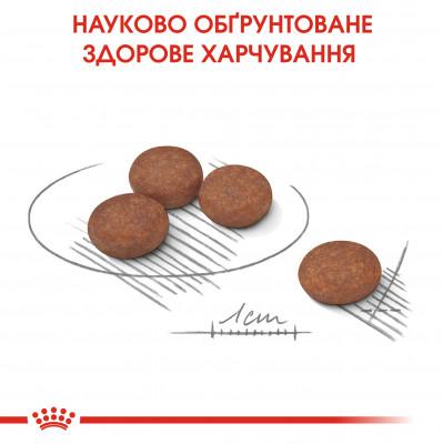 Сухий корм - Digestive Care Mini