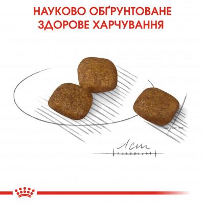 Сухий корм - Coat Care Mini
