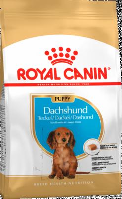 Сухий корм - Dachshund Puppy