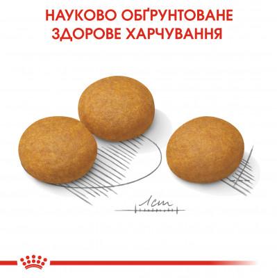 Сухий корм - Dermacomfort Maxi