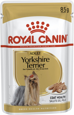 Консервований корм - Yorkshire Terrier Adult