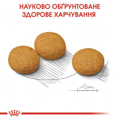 Сухий корм - Dermacomfort Medium