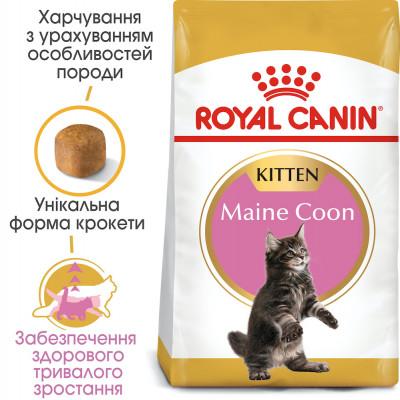 Сухий корм - Maine Coon Kitten