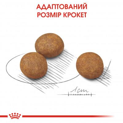 Сухий корм - Maxi Puppy