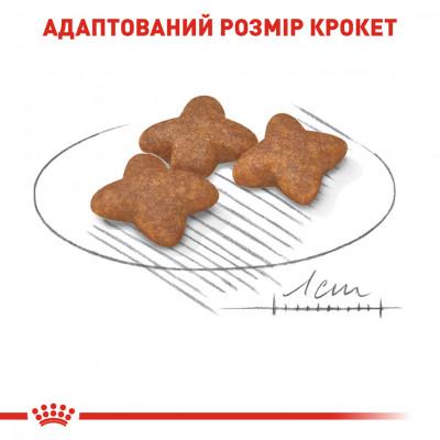 Сухой корм - Mini Adult