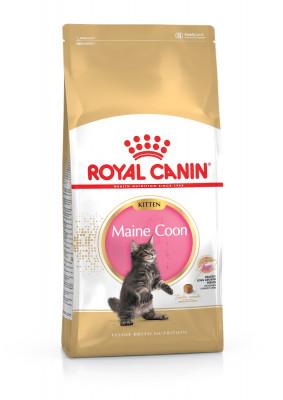 Maine Coon Kitten купить в Киеве, Харькове, Днепре - цены, отзывы, доставка по всей Украине | PETSLIKE.net