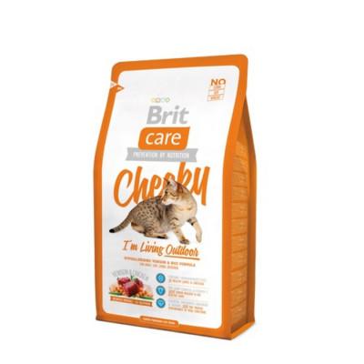 Сухий корм - Гіпоалергенний корм для дорослих котів, які живуть на вулиці — оленина і рис