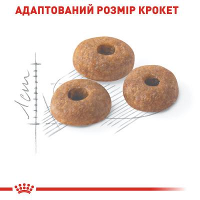 Сухий корм - Fit 32