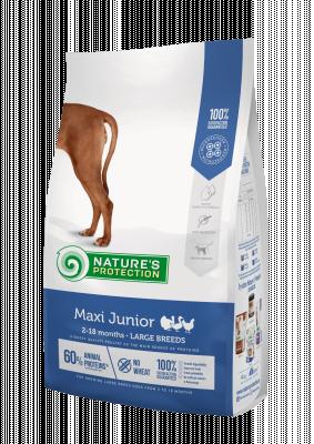 Сухой корм - Maxi Junior Large Breeds