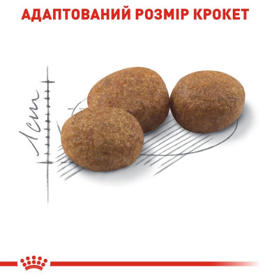 Сухий корм - Sterilised