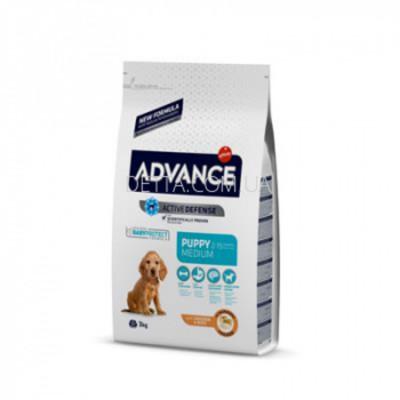 Сухий корм - Advance Dog Medium Puppy для цуценят середніх порід з куркою та рисом