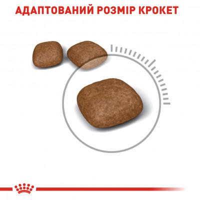 Сухий корм - Urinary Care