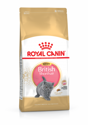 Сухий корм - British Shorthair Kitten